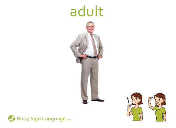 Adult Baby Sign Language Flash card