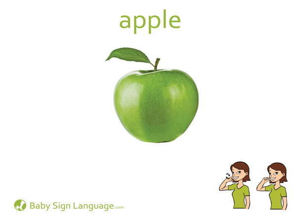 Apple Baby Sign Language Flash card