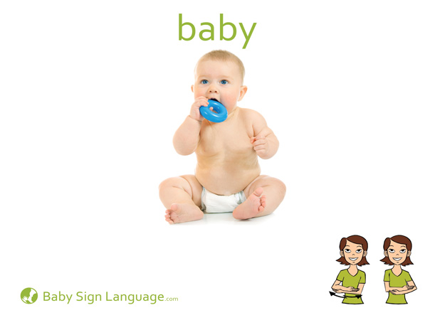 Baby Baby Sign Language Flash card