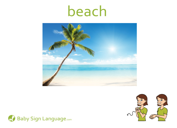 Beach Baby Sign Language Flash card