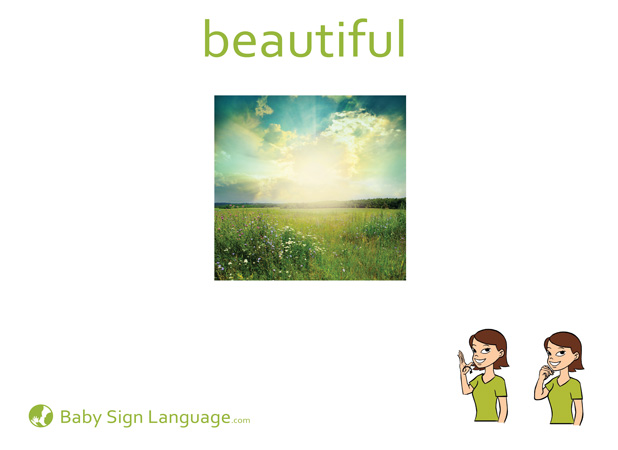 Beautiful Baby Sign Language Flash card