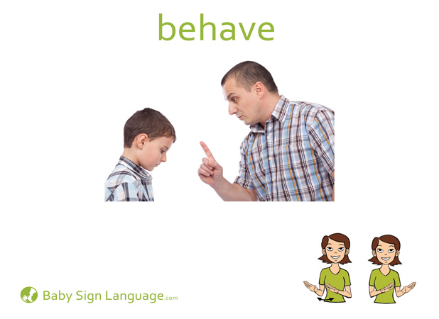 Behave Baby Sign Language Flash card