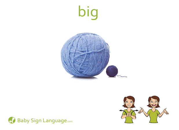 Big Baby Sign Language Flash card
