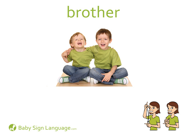 Brother Baby Sign Language Flash card