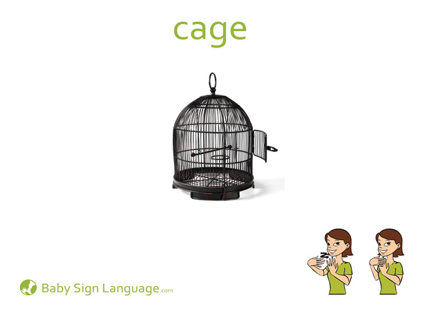 Cage Baby Sign Language Flash card