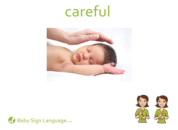 Careful Baby Sign Language Flash card