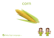 Corn Flash Card Thumbnail