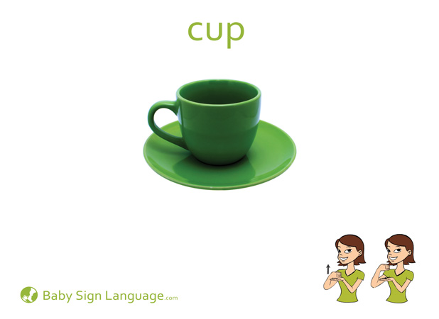 Cup Baby Sign Language Flash card