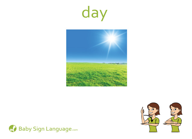Day Baby Sign Language Flash card