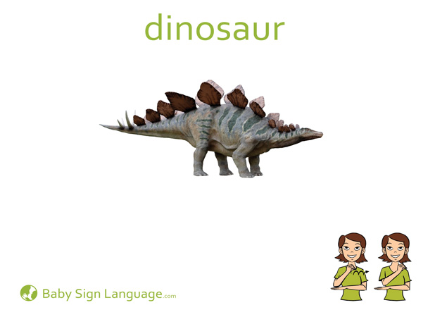 Dinosaur Baby Sign Language Flash card