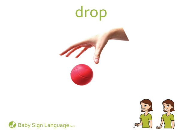 Drop Baby Sign Language Flash card