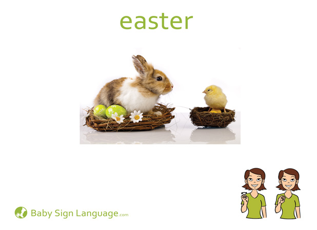 Easter Baby Sign Language Flash card