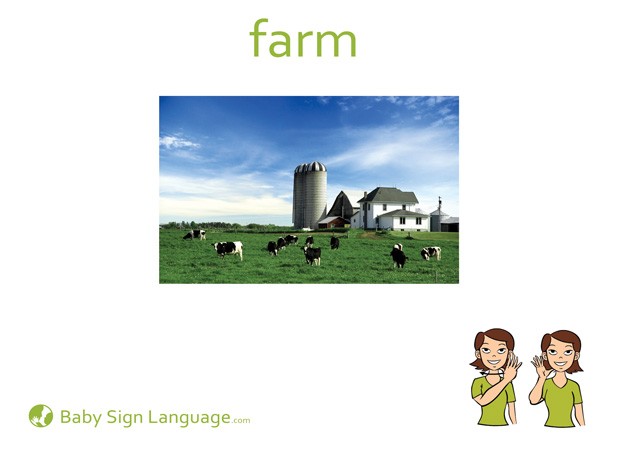 Farm Baby Sign Language Flash card