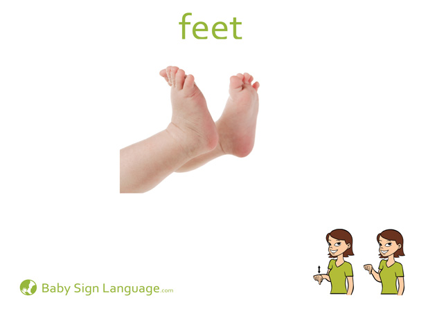 Feet Baby Sign Language Flash card