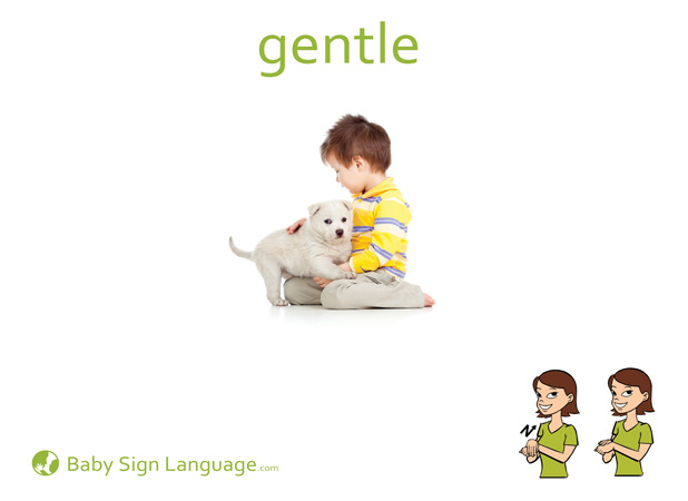 Gentle Baby Sign Language Flash card