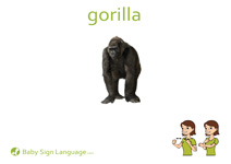 Gorilla Flash Card Thumbnail