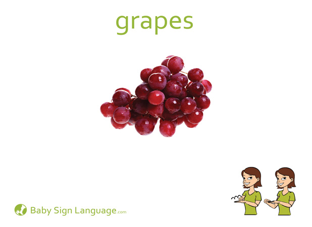 Grapes Baby Sign Language Flash card
