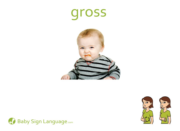 Gross Baby Sign Language Flash card