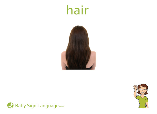 Hair Baby Sign Language Flash card