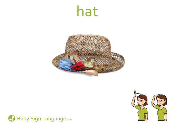 Hat Baby Sign Language Flash card