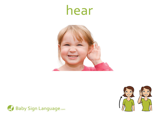 Hear Baby Sign Language Flash card