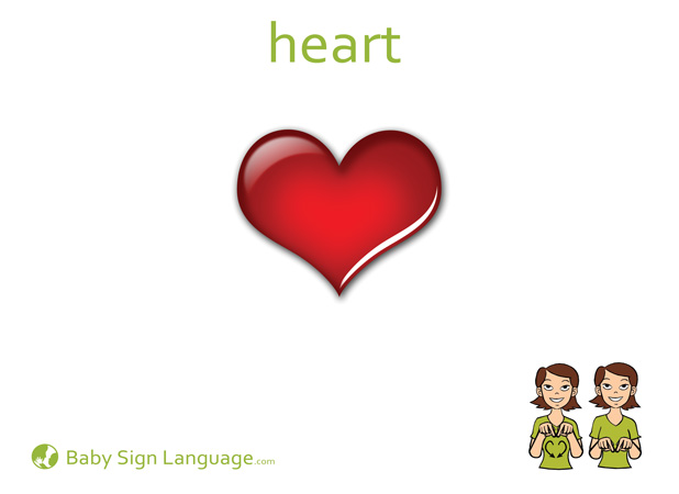Heart Baby Sign Language Flash card
