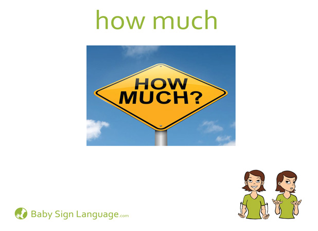 How Much Baby Sign Language Flash card