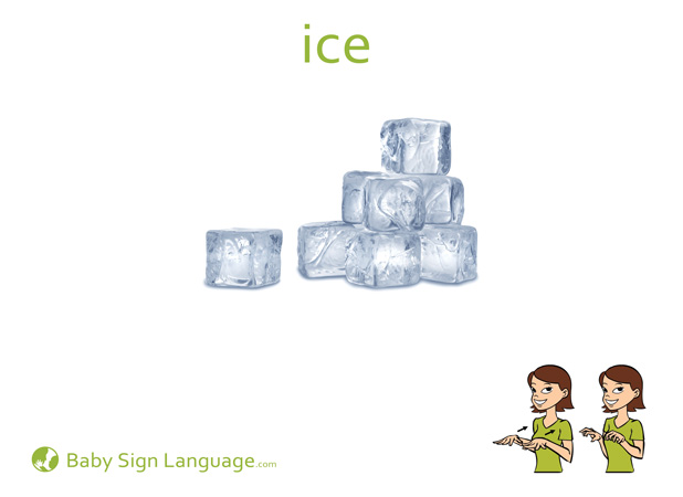 Ice Baby Sign Language Flash card
