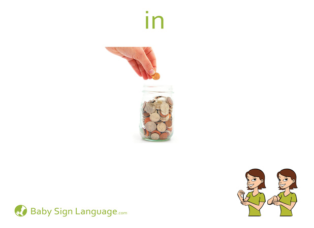 In Baby Sign Language Flash card