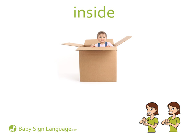 Inside Baby Sign Language Flash card