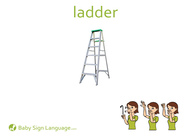 Ladder Baby Sign Language Flash card