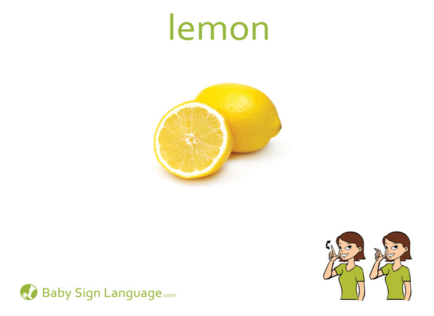 Lemon Baby Sign Language Flash card