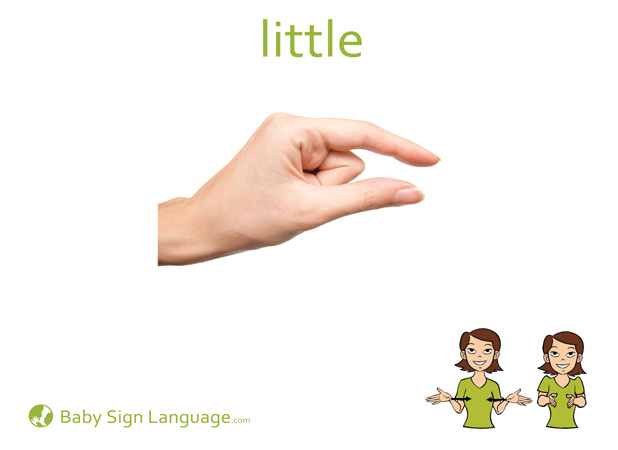 Little Baby Sign Language Flash card