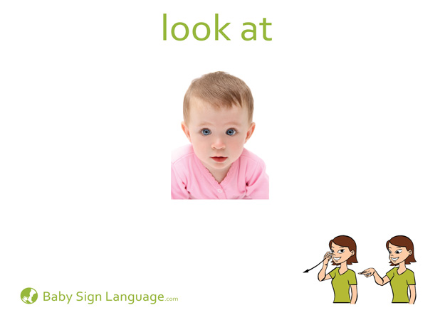 Look At Baby Sign Language Flash card