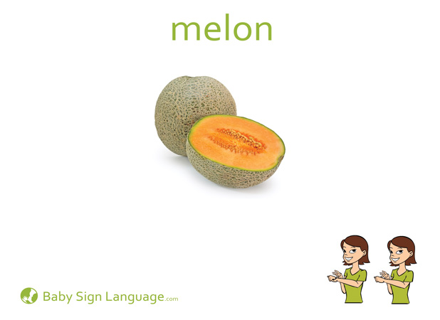 Melon Baby Sign Language Flash card