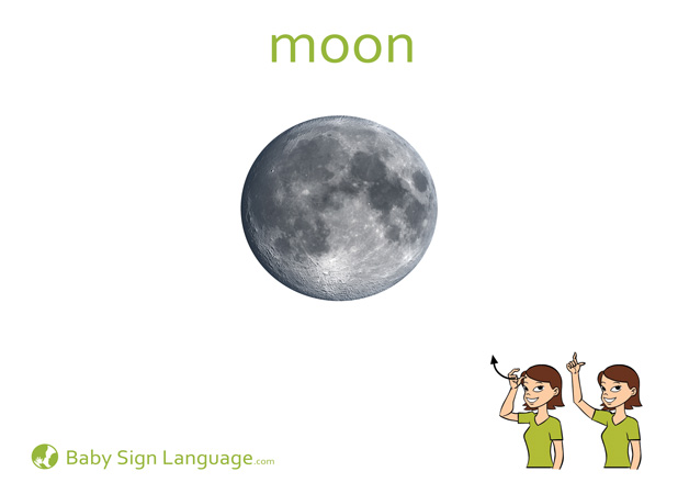 Moon Baby Sign Language Flash card