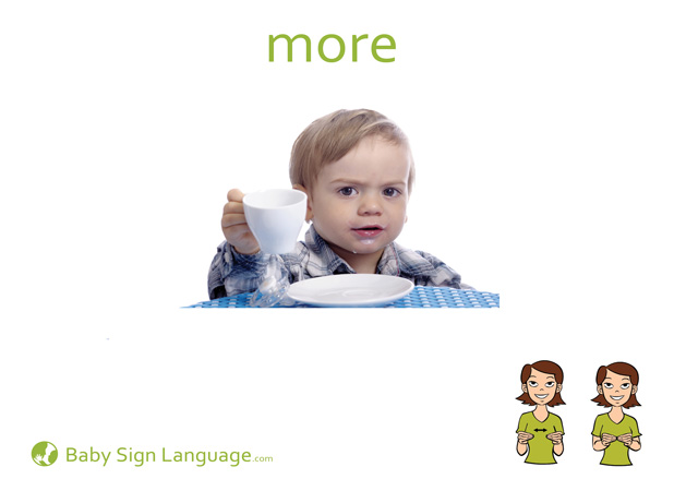 More Baby Sign Language Flash card