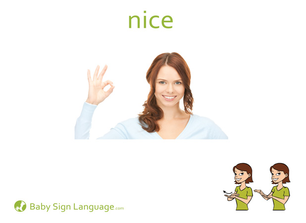 Nice Baby Sign Language Flash card