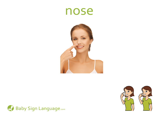 Nose Baby Sign Language Flash card