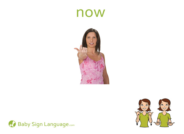 Now Baby Sign Language Flash card