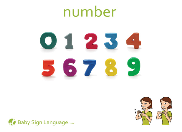 Number Baby Sign Language Flash card
