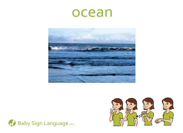 Ocean Baby Sign Language Flash card