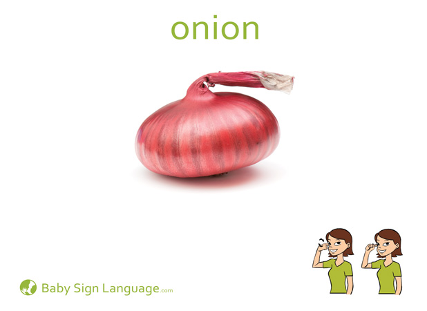 Onion Baby Sign Language Flash card