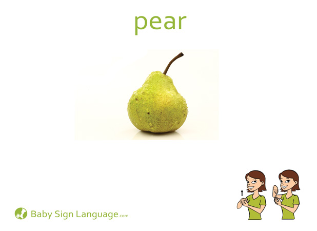 Pear Baby Sign Language Flash card