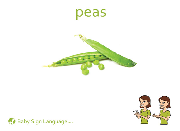 Peas Baby Sign Language Flash card