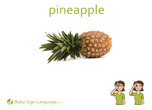 Pineapple Baby Sign Language Flash card