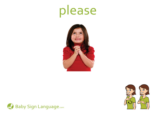 Please Baby Sign Language Flash card
