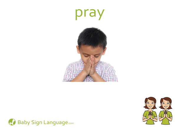 Pray Baby Sign Language Flash card