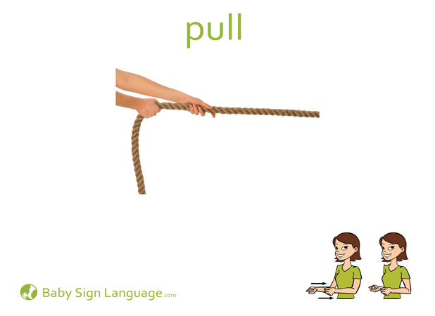 Pull Baby Sign Language Flash card