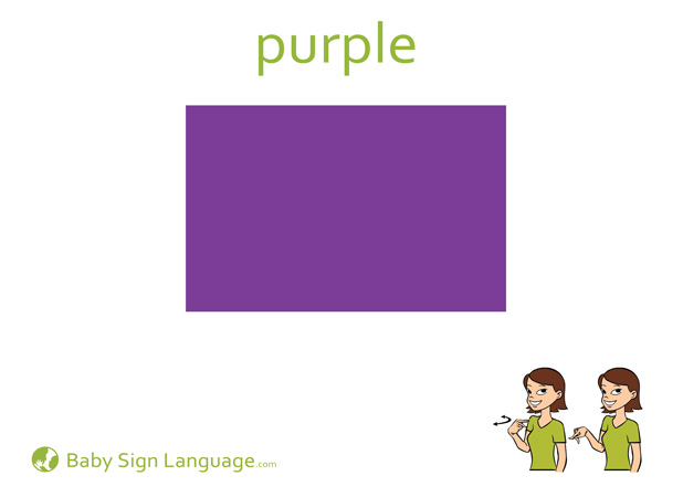 Purple Baby Sign Language Flash card